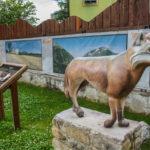 Parco in Miniatura riproduzione del lupo
