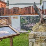 Parco in Miniatura riproduzione dell'aquila reale